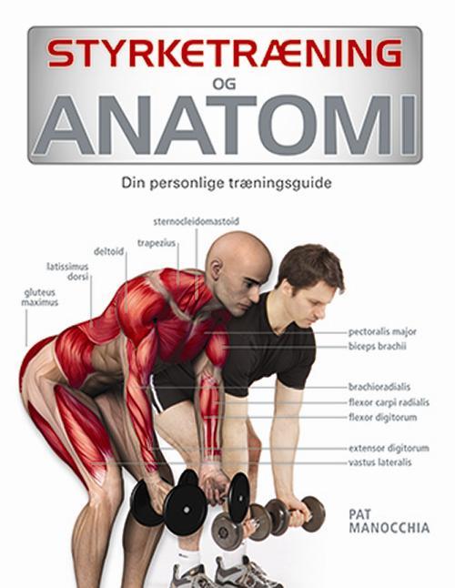 Styrketræning og anatomi
