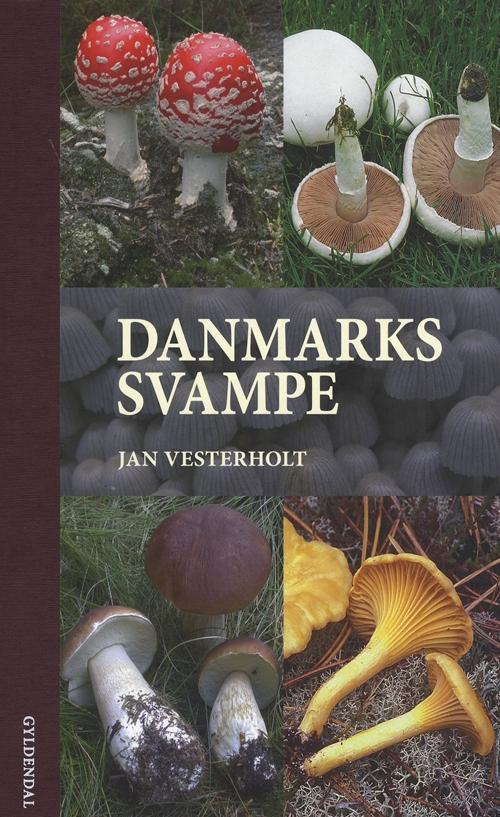 Danmarks svampe