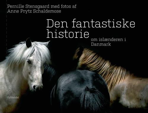 Den fantastiske historie om islænderen i Danmark