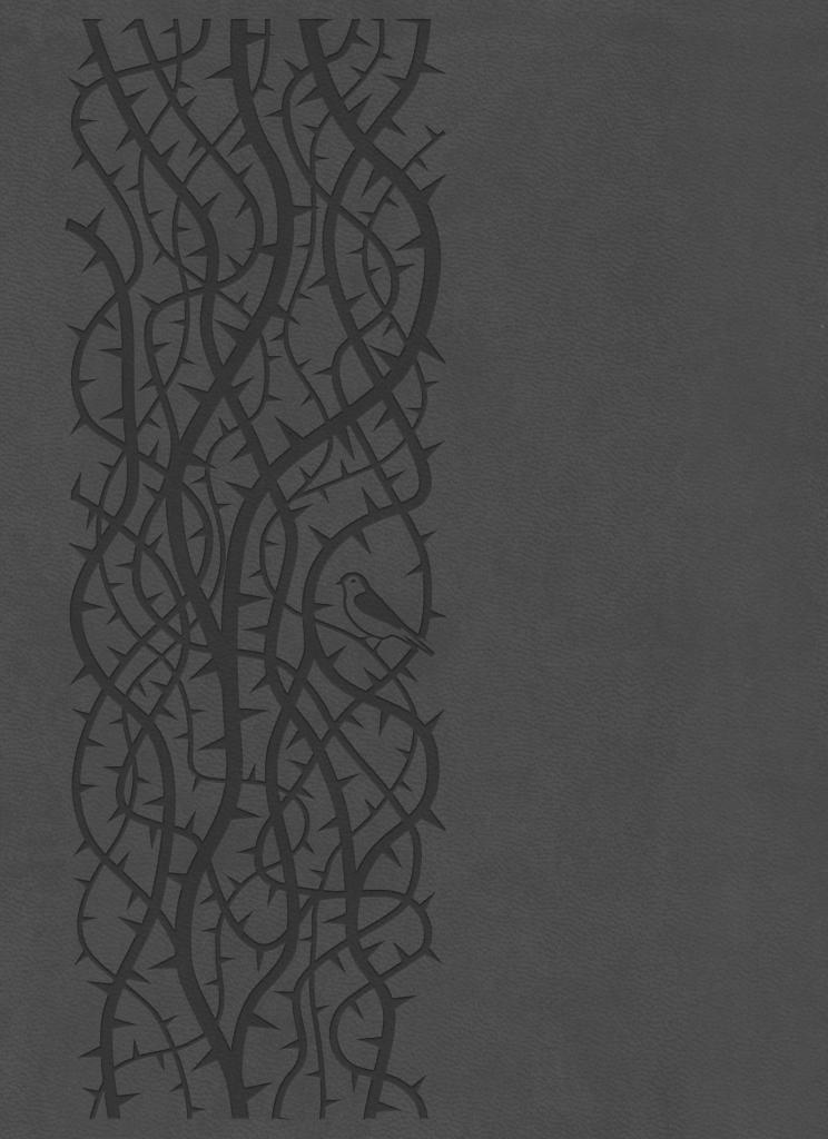 Bibelen på Hverdagsdansk, premium kunstlæder, grå