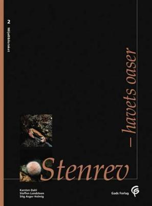 Stenrev (2)