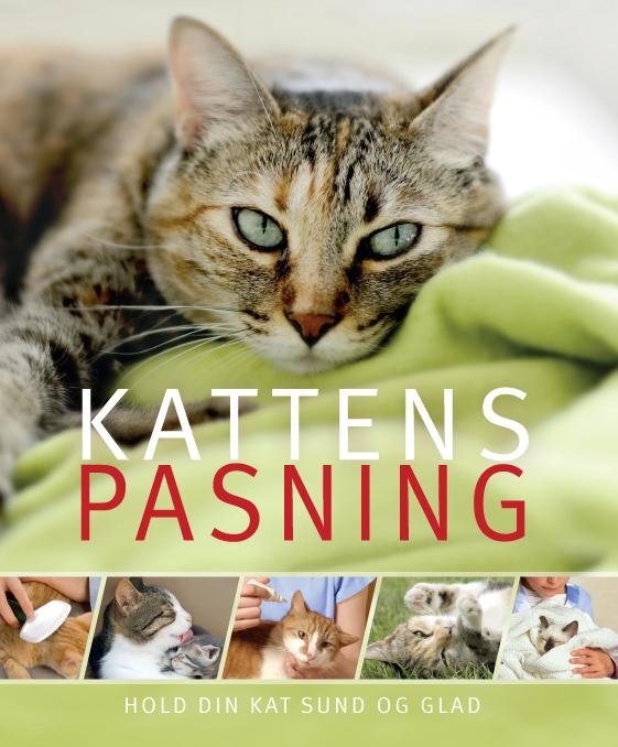 Kattens pasning