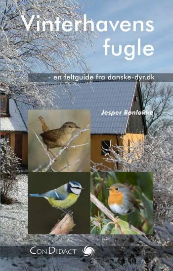 Vinterhavens fugle
