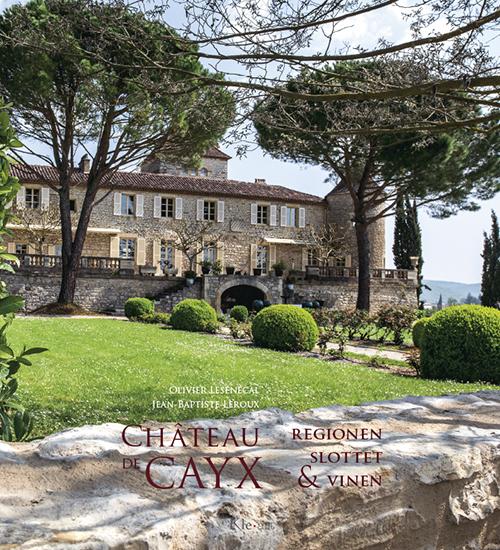 Chateau de Cayx