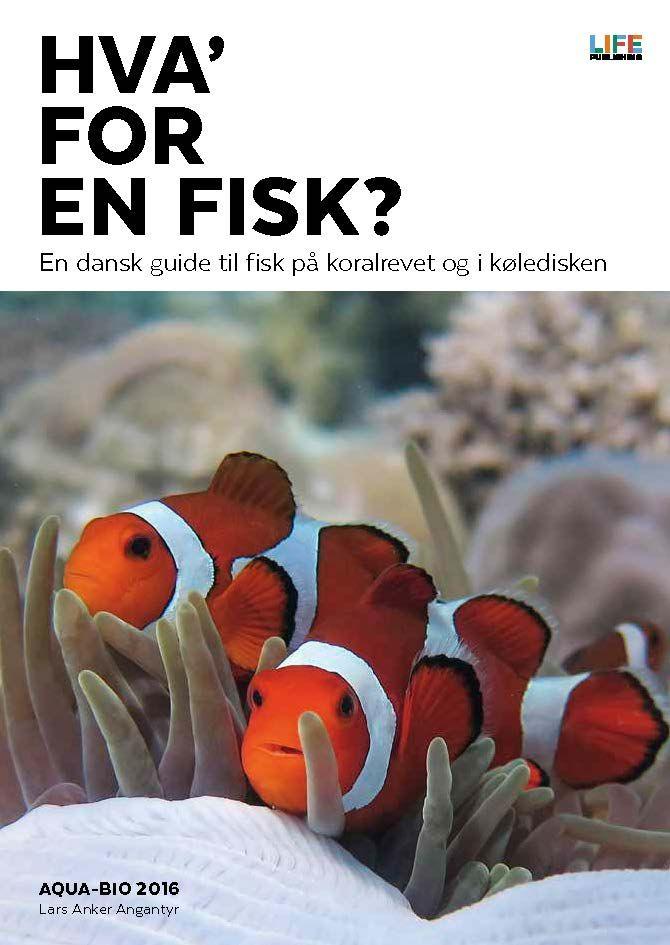 Hva' for en fisk?